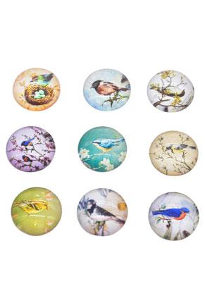 Cabochon Mix Vogels 16mm