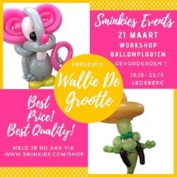 Workshop Ballon Plooien Gevorderden 1 - 21/03/19